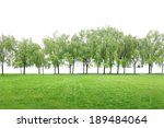 grass field and trees on  white ... | Shutterstock . vector #189484064