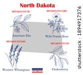 north dakota. set of usa... | Shutterstock .eps vector #1894917376