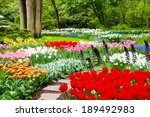 Beautiful Flower Beds In...