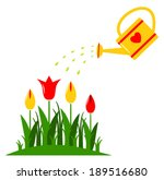 vector tulips and watering can...