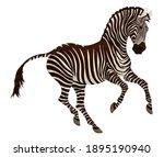 galloping plains zebra pricked... | Shutterstock .eps vector #1895190940