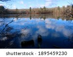 View Of The Leach Pond At...