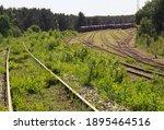 Railway Siding  Overgrown Grass....