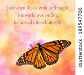 Just When The Caterpillar...