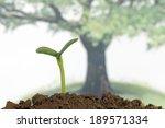 new life | Shutterstock . vector #189571334