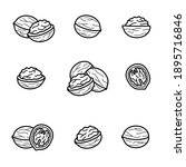 walnut set. collection icon... | Shutterstock .eps vector #1895716846