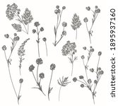 collection of vector rustic... | Shutterstock .eps vector #1895937160