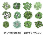 vector collection. realistic... | Shutterstock .eps vector #1895979130