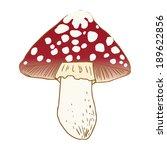 vector illustration of mushrooms | Shutterstock .eps vector #189622856