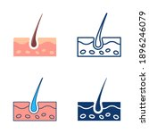 skin icon set in flat and line...   Shutterstock .eps vector #1896246079