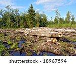 chopping wood | Shutterstock . vector #18967594