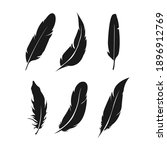 feathers icon set. bird feather ... | Shutterstock .eps vector #1896912769