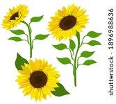 clip art sunflowers  vector.... | Shutterstock .eps vector #1896988636
