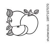 apples hand drawn vector...   Shutterstock .eps vector #1897107070
