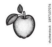 apple. engraving style apple...   Shutterstock .eps vector #1897107076