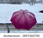 A Pink Umbrella Resting On A...