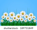 summer background with daisy ...   Shutterstock .eps vector #189731849