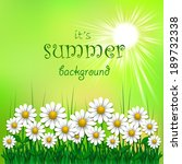summer background with daisy ... | Shutterstock .eps vector #189732338