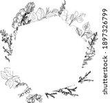 Botanical Ink Frames. Plants...