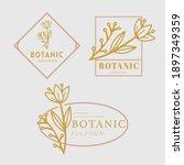 botanical leaf logo desain ... | Shutterstock .eps vector #1897349359