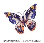 tropical elegant butterfly with ... | Shutterstock .eps vector #1897466830