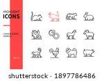 chinese zodiac animals   line...   Shutterstock .eps vector #1897786486