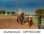 Small photo of Fallon, Nevada - August 2, 2014: A cowboy on horseback roping a calf in a rodeo at the Churchill County Fairgrounds in the city of Fallon, in the State of Nevada.