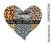 set of animal skin patterns | Shutterstock .eps vector #1898002246