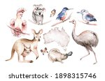 Watercolor Australian Cartoon...