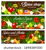 herbs and spices  seasonings ... | Shutterstock .eps vector #1898389300