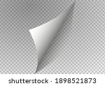 page curl with shadow on blank... | Shutterstock .eps vector #1898521873