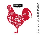 chicken cuts. diagrams for... | Shutterstock .eps vector #1898538106