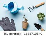Gardening Tools On Blue...