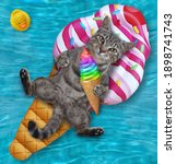 A Gray Cat With An Ice Cream...