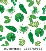 leaves plants nature pattern... | Shutterstock .eps vector #1898769883