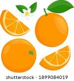 whole and sliced orange fruit ... | Shutterstock .eps vector #1899084019