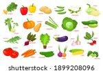 colorful cartoon vegetables... | Shutterstock .eps vector #1899208096