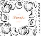 Peach Fruit Sketch Frame  Hand...