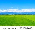 Nagano Prefecture  Japan  View...