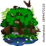 vector woodland green forest... | Shutterstock .eps vector #1899472123