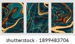 set of textures with fluid...   Shutterstock .eps vector #1899483706