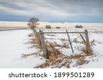 Abandoned Homestead On The...
