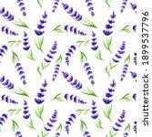 watercolor seamless pattern...   Shutterstock . vector #1899537796