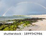 Rainbow At Galapagos Tropical...