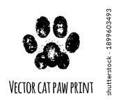 vector cat grunge footprint....   Shutterstock .eps vector #1899603493