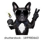 Stock photo dog with martini cocktail and victory or peace fingers 189980663