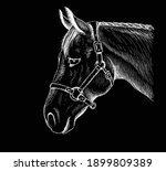 the vector logo horse for t... | Shutterstock .eps vector #1899809389