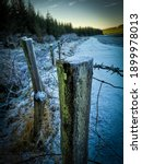 Fence Post Barbed Wire Frost