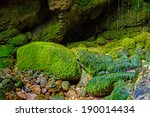 Green Mossy Rocks With Wet...