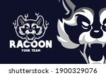 angry raccoon had sports logo... | Shutterstock .eps vector #1900329076